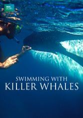 Swimming with Killer Whales